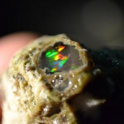 Opalo noble